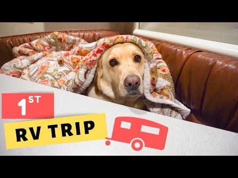 1st RV trip with the Dogs (1 of 3)