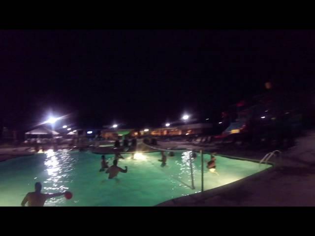 Adult Swim Night August 2016