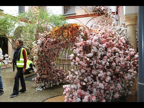 Córdoba vuelve a llenarse de arte floral en el Festival Flora 2019
