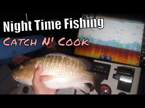 Night Time Patch Reef Fishing | Key Largo Catch N Cook
