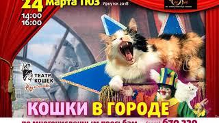ПРЕМЬЕРА театра кошек Куклачёва - «КОШКИ В ГОРОДЕ!»