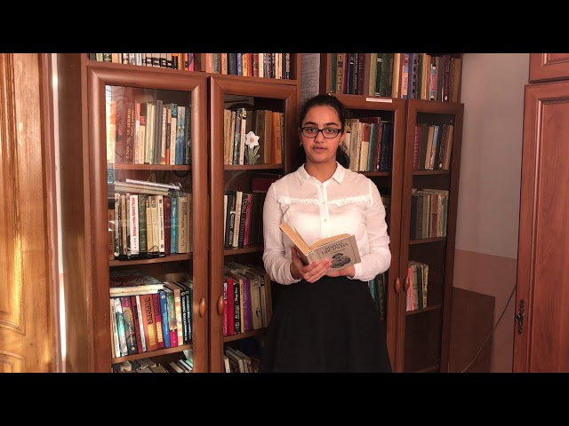 Изображение предпросмотра прочтения – АйсуГасанова читает произведение «Страна» М.И.Цветаевой