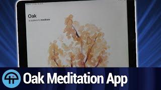 Oak Meditation App Review