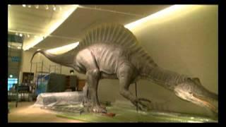 よみがえる!謎の巨大恐竜スピノサウルス