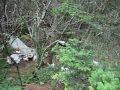 Airplane Crash Site Near Mount Mitchell North Carolina mp3