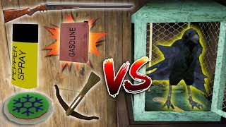 CAN WE KILL GRANNY'S PET CROW?! (All Weapons vs New Pet)