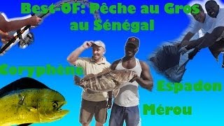 Best-OF-Pêche au gros senegal