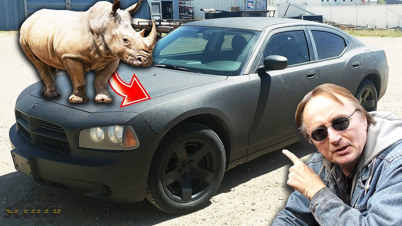 Modified Dodge Charger Police Car Custom Rhino Liner Paint Job