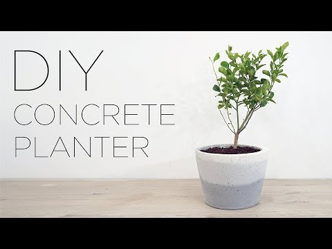diy-concrete-planter-with-an-ombre-finish