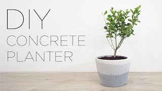 DIY Concrete Planter with an Ombre Finish
