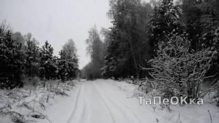 снегопад . дорога в лесу .