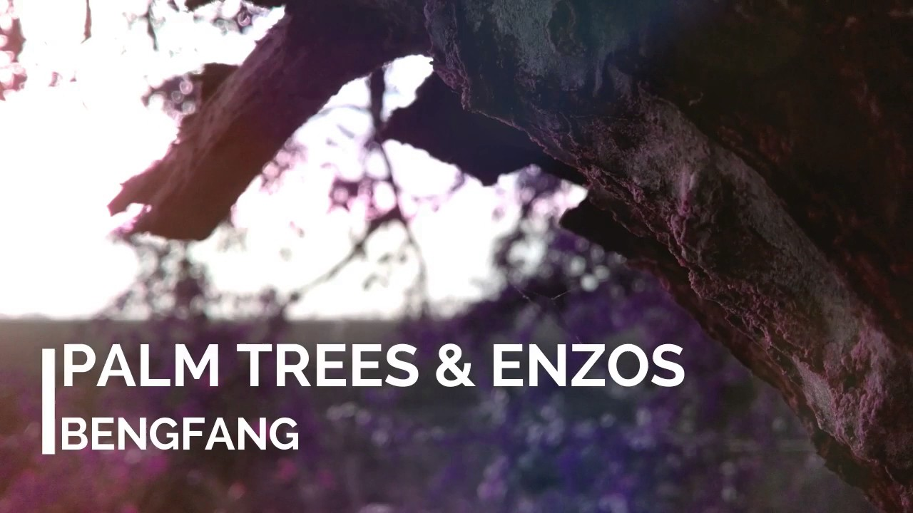 Bengfang – Palm Trees & Enzos  #Trend