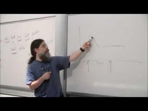 intermittent reinforcement theory
