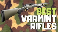 Best Varmint Rifle [2020] | Top 9 Varmint Rifles For The Money