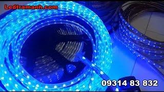 Đèn led dây 5050 220v, đèn led dây 3014 220V 100 mét trang trí ngoài trời
