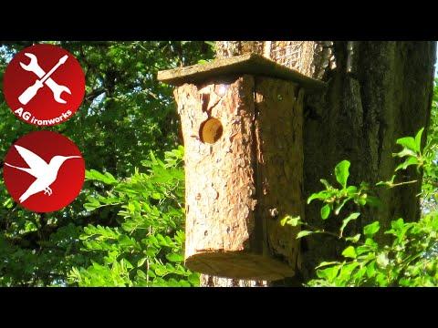 Log birdhouse -