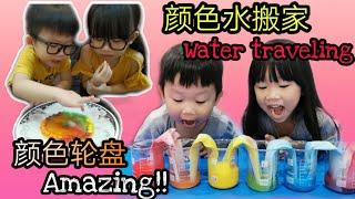 科学小实验 | 适合儿童的小实验!认识颜色~颜色水搬家~辨别颜色的变化! water traveling!