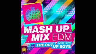 Ministry of Sound Mash up Mix EDM
