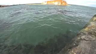 Главная Достопримечательность Города Одессы 2019 Перевернутый Танкер Delfi Пляж Дельфин Одесса 4k