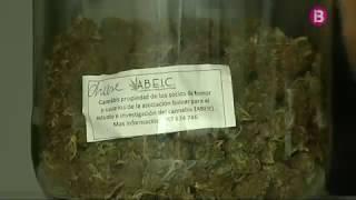 Hi ha 20 clubs de cànnabis al·legals a Mallorca