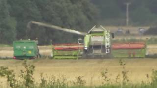 up farming Combine harvester in action RSPB Snettisham Norfolk UK 24aug16 452p