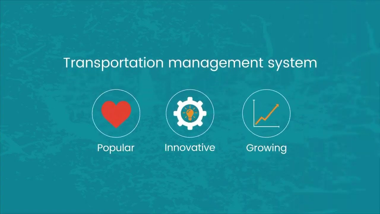 Transportation Management System | MercuryGate TMS System