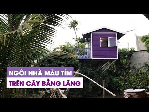 KÌ LẠ: Ngôi nhà màu tím trên cây bằng lăng có một không hai ở Cần Thơ