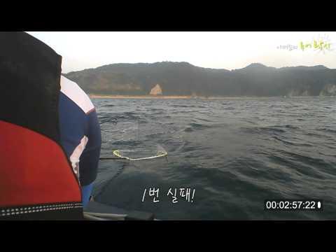 울진 대광어 랜딩영상