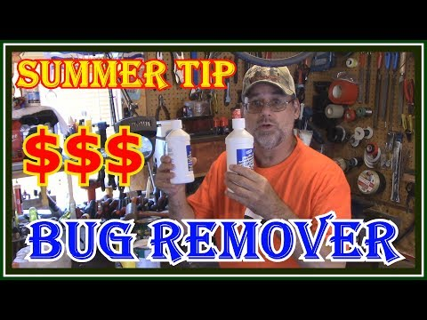 HOW TO CLEAN BUGS OFF YOUR WINDSHIELD - HOMEMADE MONEY SAVER $$$
