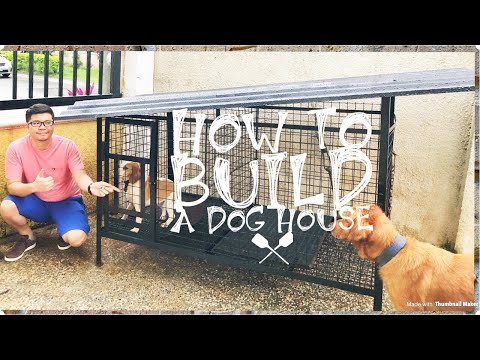 An Easy Way On How To Build A Dog House