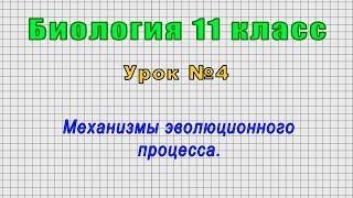 Биология 11 класс (Урок№4 - Механизмы эволюционного процесса.)