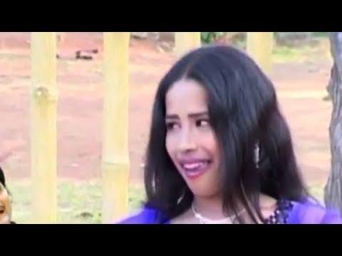 DILIP LAHARIYA-CHHATTISGARHI SONG-BINA ODHANI KE-NEW HIT CG LOK GEET HD VIDEO 2017-AVM STUDIO