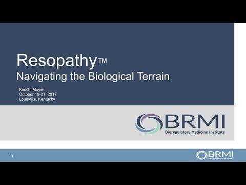 #BRMI2017: Kimchi Moyer, L.Ac. - Resopathy: Navigating the Biological Terrain
