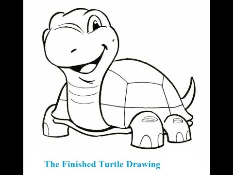 How To Draw A Cartoon Turtle Step By Step Youtube