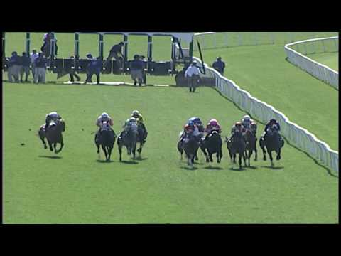 LAUREL PARK 4 9 2017 RACE 5