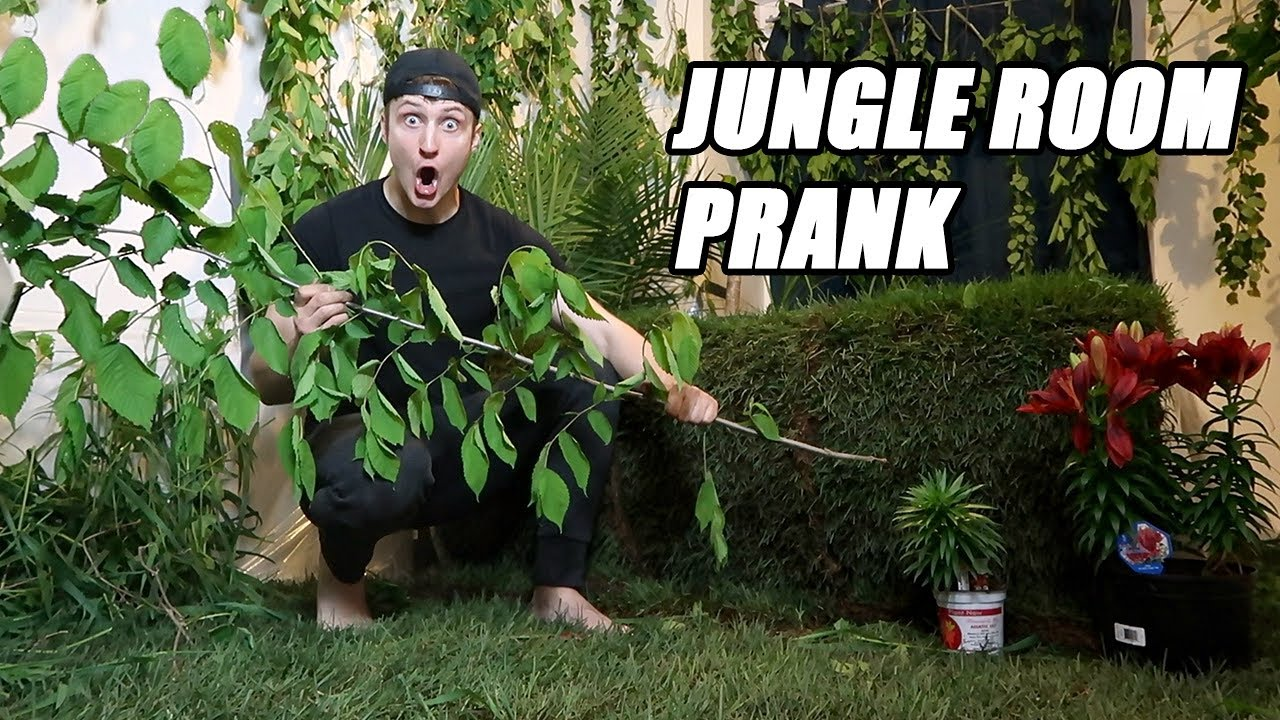 TURNED HIS ROOM INTO A JUNGLE PRANK!! (REAL GRASS) PRANK WARS