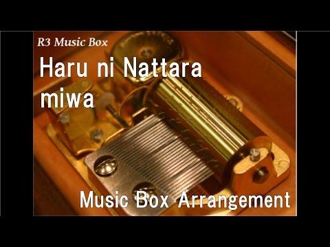 Haru ni Nattara/miwa [Music Box]