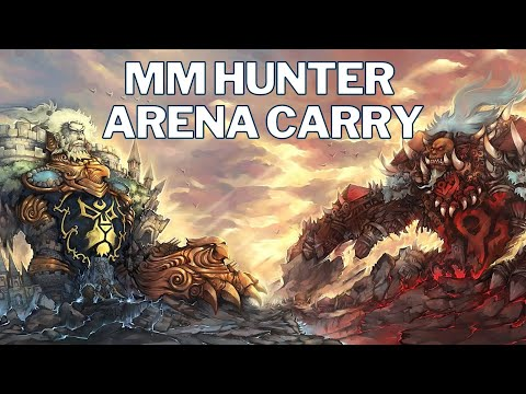 MM Hunter Arena Carry 2v2 WoW SL   Shadow Priest & WW Monk   World of Warcraft