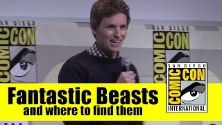Fantastic Beasts and Where To Find Them | 2016 Comic Con Full Panel (Eddie Redmayne)