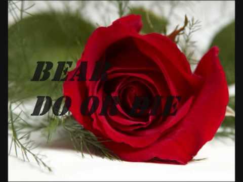 BEAR - DO OR DIE