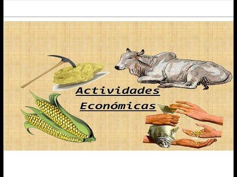 Actividades Económicas De La Nueva España: Minería, Agricultura, Ganadería Y Comercio
