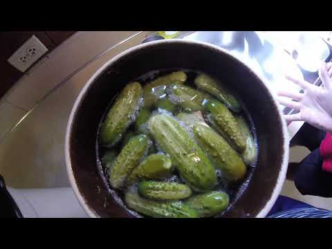 Easy And Delicious Fermented Sweet Pickle Recipe
