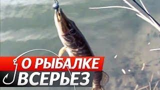 """Весной на Щуку: джиговые приманки и воблеры. """"О Рыбалке Всерьез"""" видео 180."""