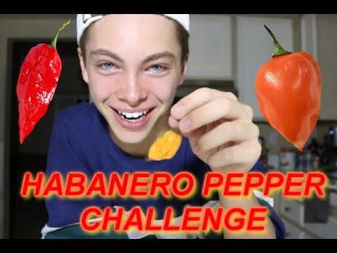 EATING ONE OF THE WORLDS HOTTEST PEPPERS *WARNING*