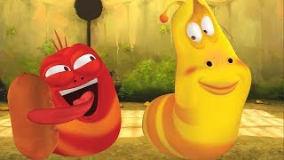LARVA - HAM | Cartoon Movie | Cartoons For Children | Larva Cartoon | LARVA Official