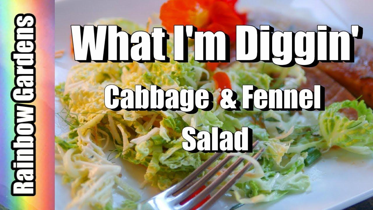 What I\u0027m Diggin\u0027 - Harvest Savoy Cabbage, Fennel, Carrots, \u0026 More ...