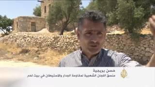 مهند صلاح.. شاب فلسطيني يواجه خطط الاستيطان