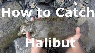 How to Catch Halibut - Drop Shot Technique - San Diego Fishing