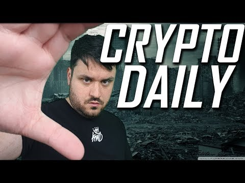 A Day in the Life   Crypto Daily