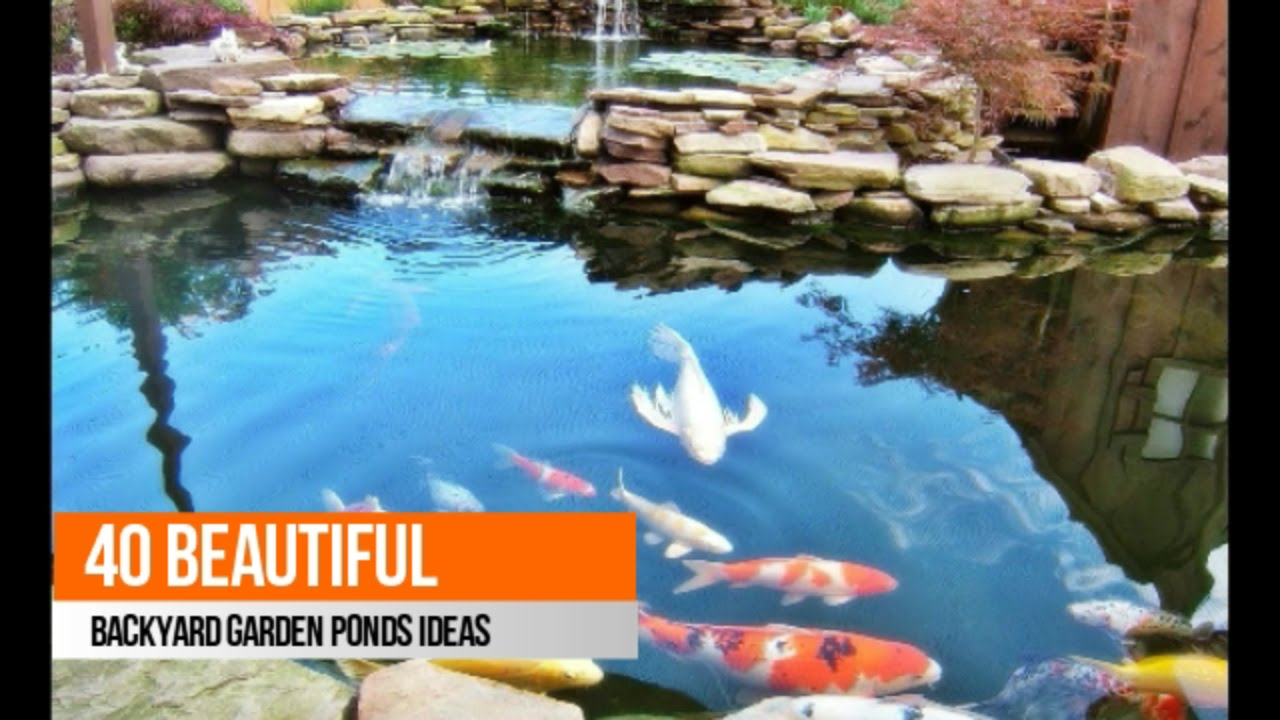 40 beautiful backyard garden ponds ideas youtube for Still pond garden design